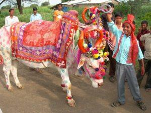 Fairs and festivals of Chhattisgarh 2